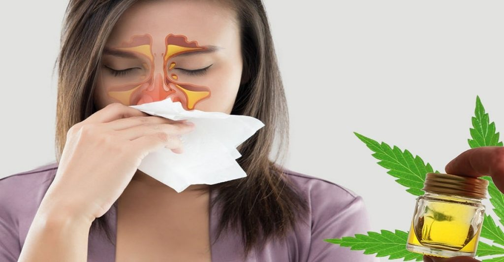 CBD for sinuses
