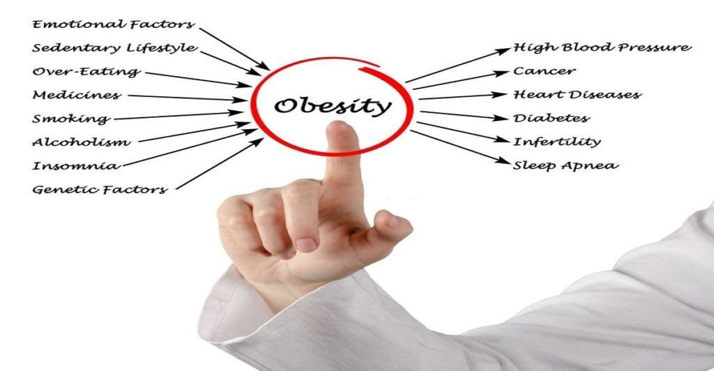 What causes obesity