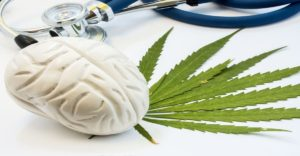 CBD for Huntington's Disease