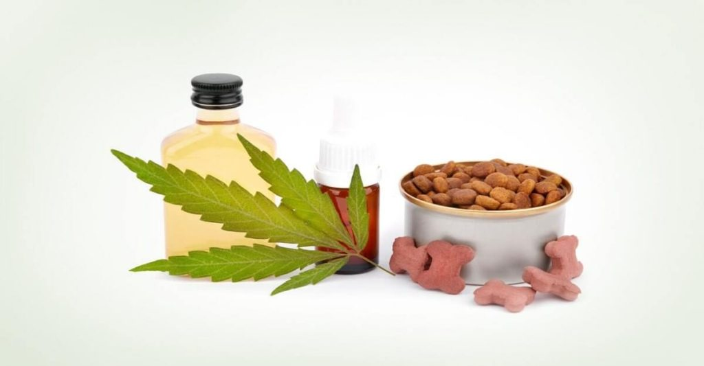 What kind of CBD products for pets can I find