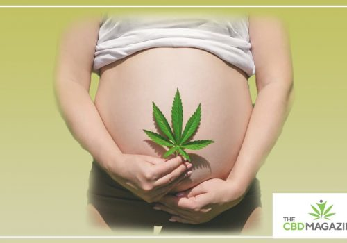 Can you use cbd while pregrant