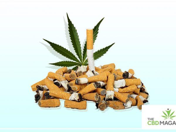 best full spectrum cbd strain to smoke